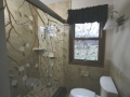 decorative_shower_door